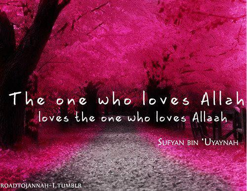 The One who loves Allah