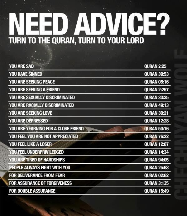 Find Advice in the Quraan