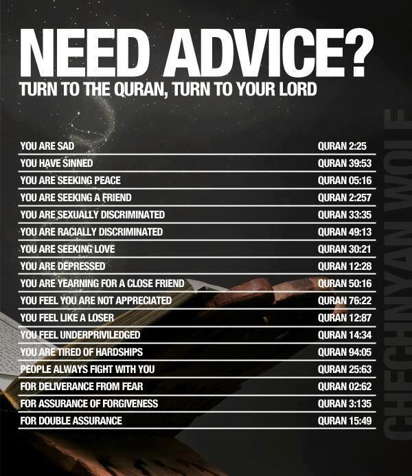 Do you need advice?